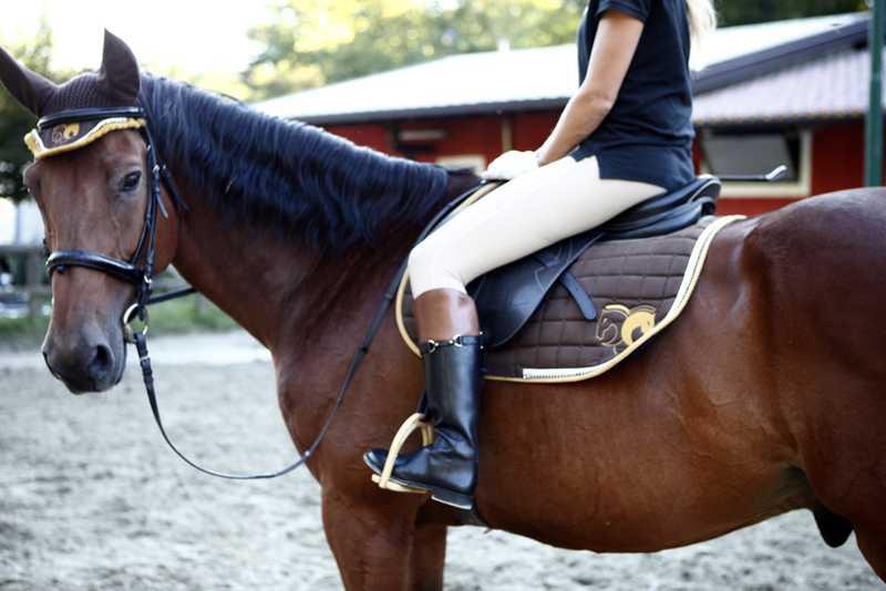 staffe per equitazione